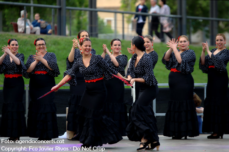 Les Cases Regionals de Sant Boi de Llobregat han organitzat una festa flamenca l'últim dia de la Festa Major 2017.